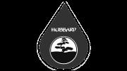 hubbard-glass